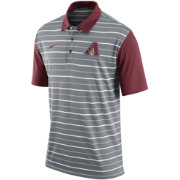 Nike Men's Arizona Diamondbacks Dri-FIT Grey Striped Polo