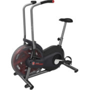 Schwinn Airdyne AD2 Upright Bike