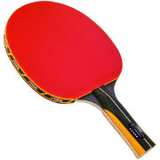 Stiga Master Series Cannon Indoor Table Tennis Racket