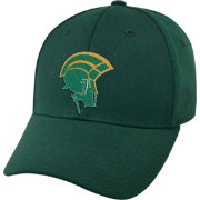 Top of the World Men's Norfolk State Spartans Green Premium Collection M-Fit Hat