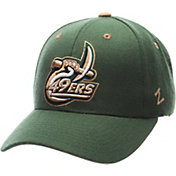 Zephyr Men's UNCC 49ers Green Competitor Adjustable Hat