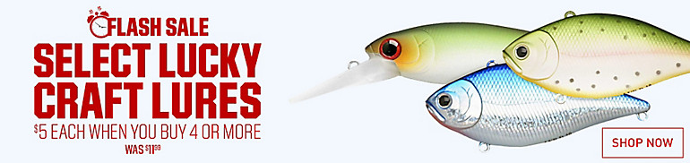 Shop Lure 1 Day Sale