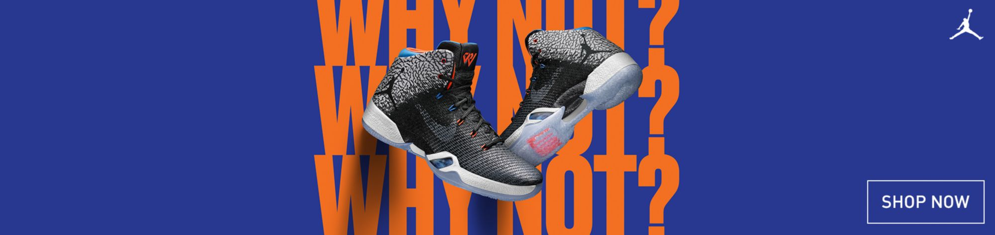 Shop Jordan XXXI Why Not?
