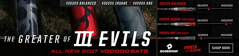 DeMarini Voodoo Bat