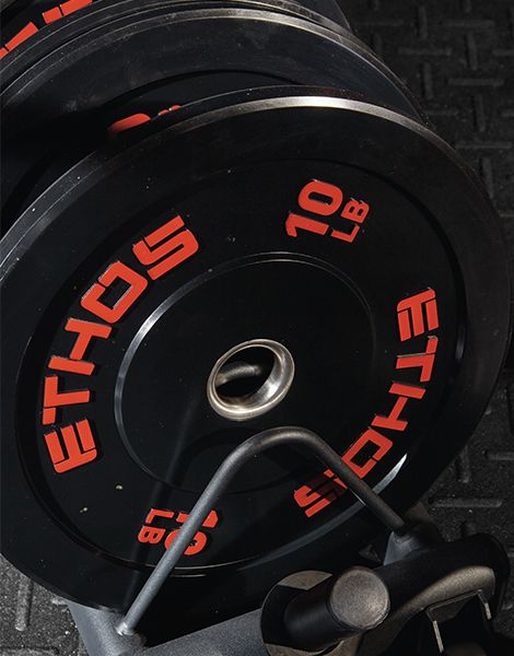 Weight Plates and Barbells