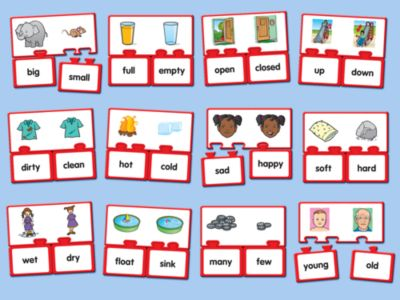 Antonyms Match-Ups at Lakeshore Learning