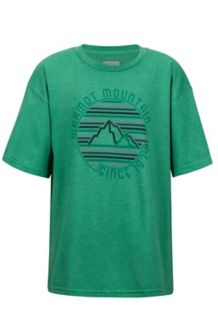 Boy's Purview Tee SS, Emerald Heather, medium