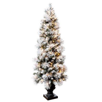 Hallmark 5.5' Sugared Spruce Pre-Lit Entryway Tree.  Ends: Dec 21, 2014 8:35:00 AM CST