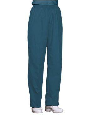 Fashion Seal scrub pants.
