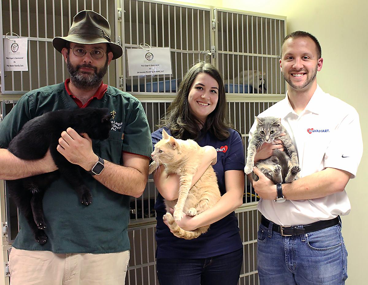 havahart holding adoptable cats