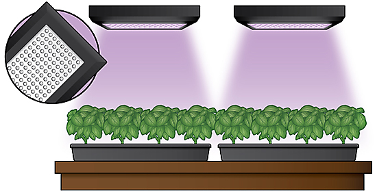 LED Lights for Hydroponic Gardens