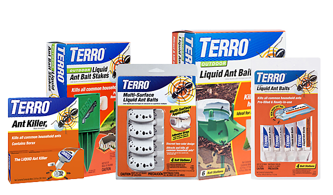 TERRO Ant Bait Collection