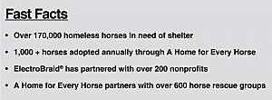 Rescue Horse Facts
