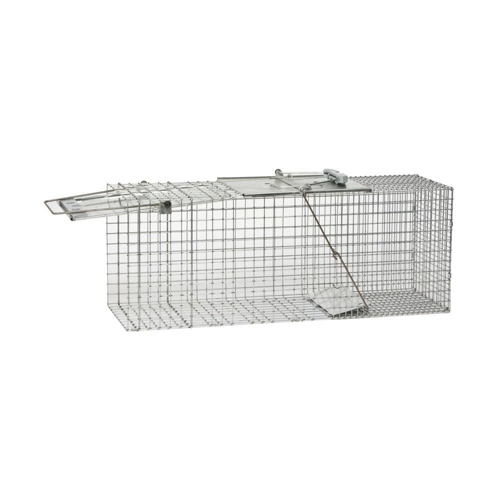 Humane animal traps