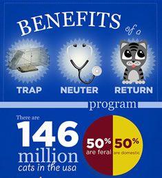 Benefits of TNR