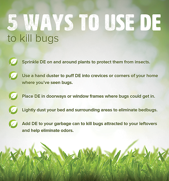 Ways to use DE to Kill Bugs