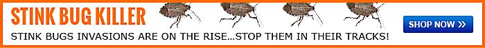Shop Stink Bug Killer