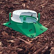 Outdoor Ant Defense