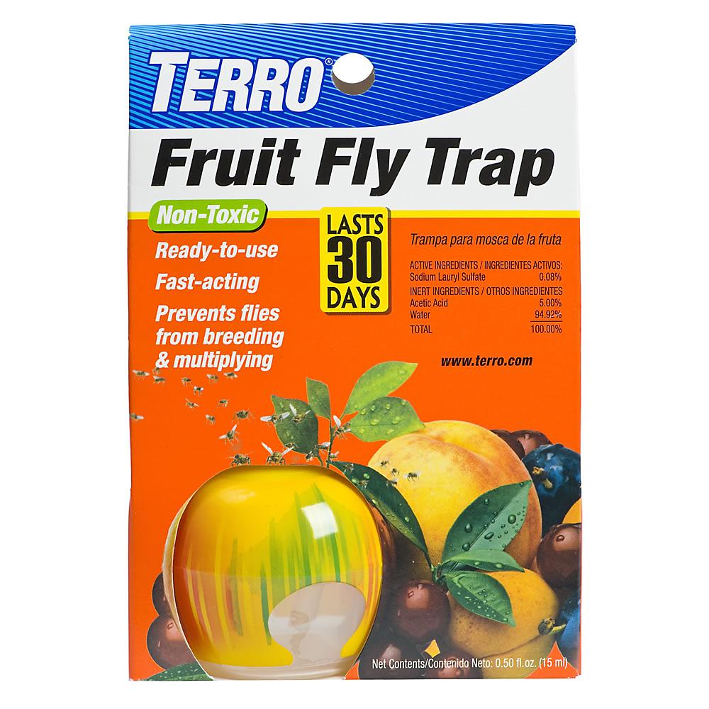 apple fruit fruit flies trap