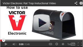 Pestchaser Video