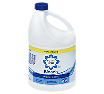 Signature Home Bleach Concentrated Regular Scent - 121 Fl. Oz.