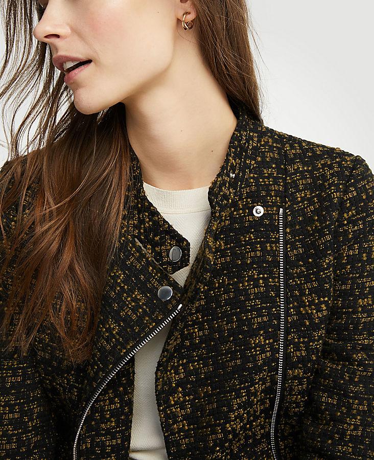Petite Tweed Moto Jacket