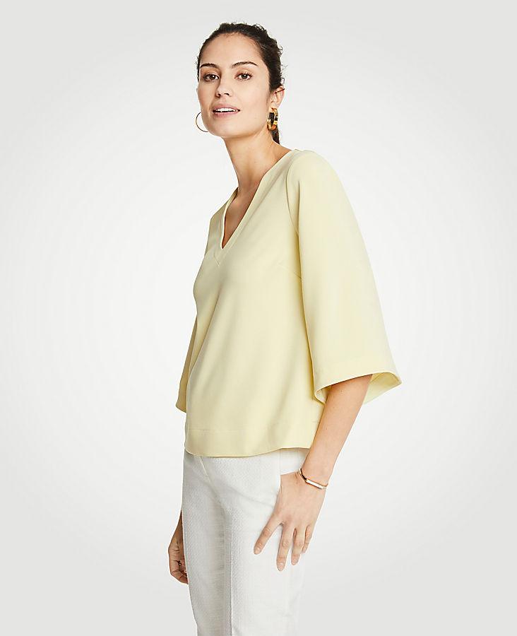 Flare Sleeve Top | Tuggl