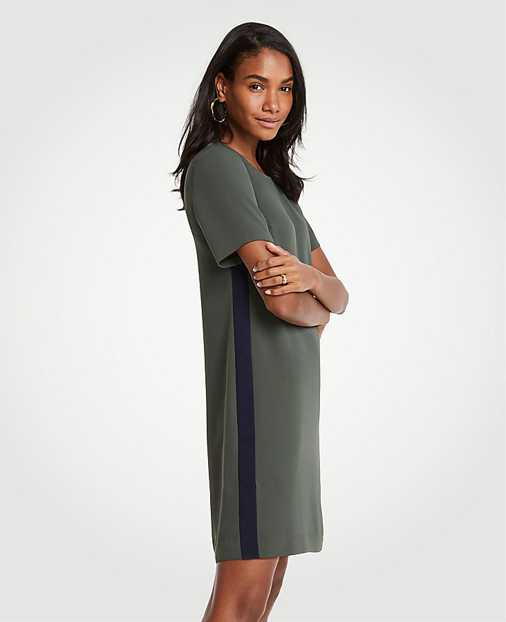 Striped Side T-Shirt Dress at Ann Taylor in Victor, NY | Tuggl