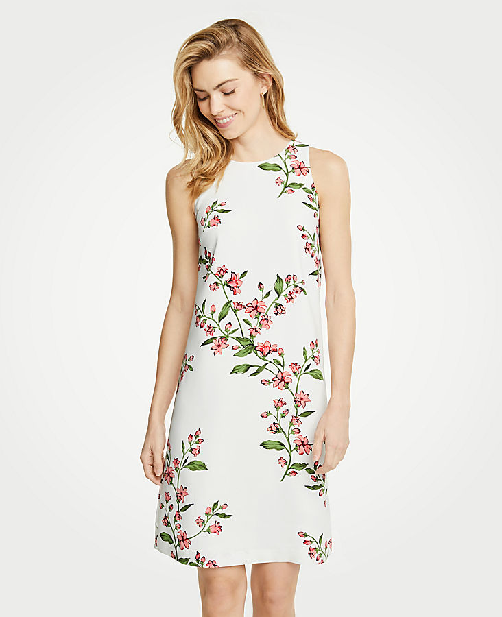 Petite Floral Sleeveless Shift Dress
