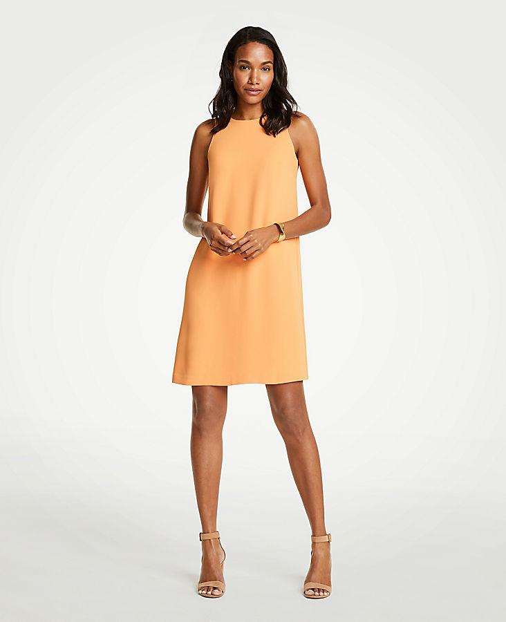 Petite Sleeveless Shift Dress