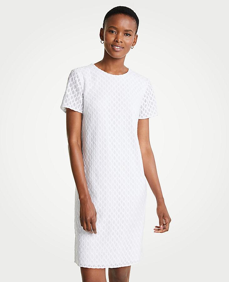 Petite Wavy Embroidery Shift Dress