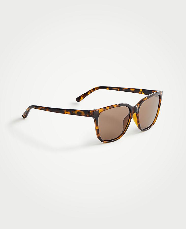 Summer Square Sunglasses | Tuggl