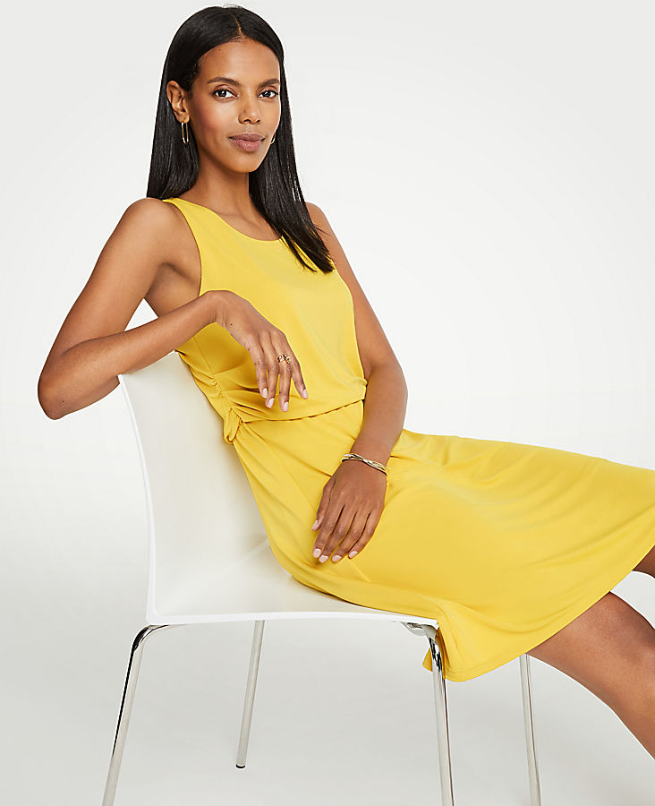 Petite Side Ruched Flare Dress