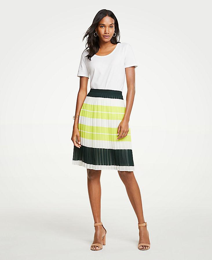 Petite Bold Stripe Pleated Skirt