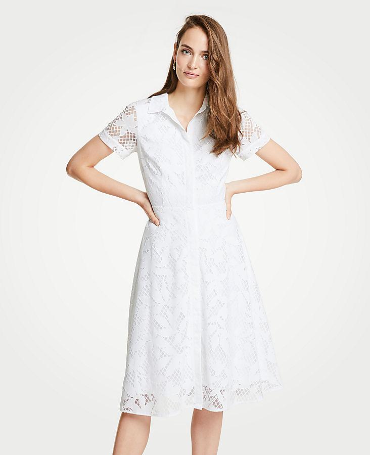 Petite Floral Lace Shirtdress