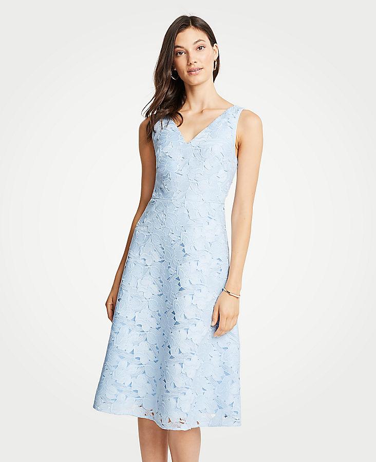 Petite Floral Lace Flare Dress