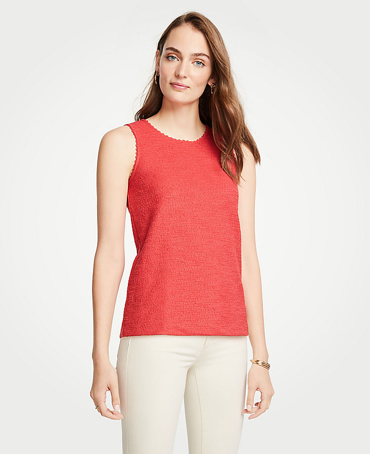 Petite Scalloped Textured Knit Shell