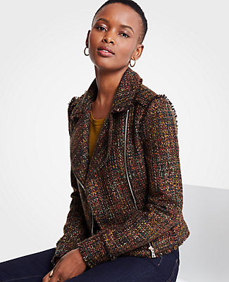 Petite Fringe Tweed Moto Jacket, Brown Multi from ANN TAYLOR