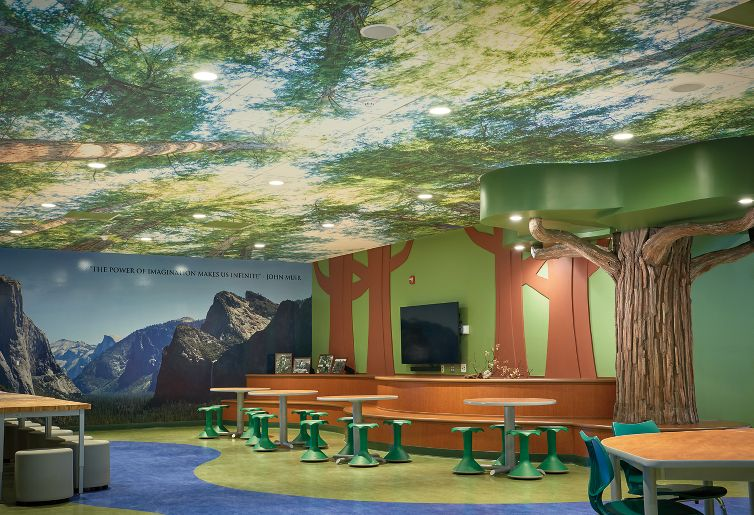 summerdale elementary school armstrong ceiling solutions commercial