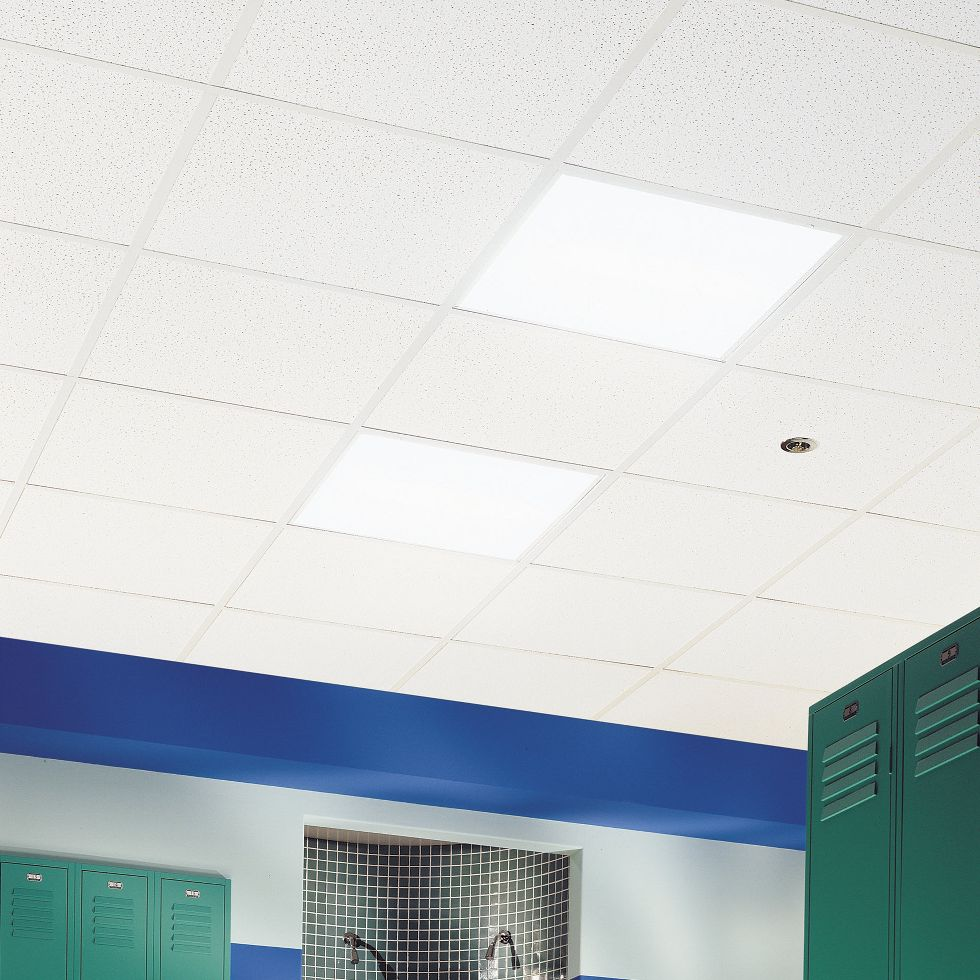 Commercial kitchen ceiling armstrong ceiling solutions commercial ceramaguard dailygadgetfo Images