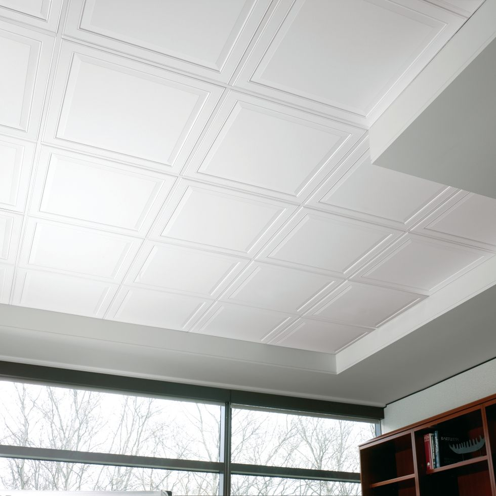 Armstrong Ceiling Tiles Commercial Rebellions