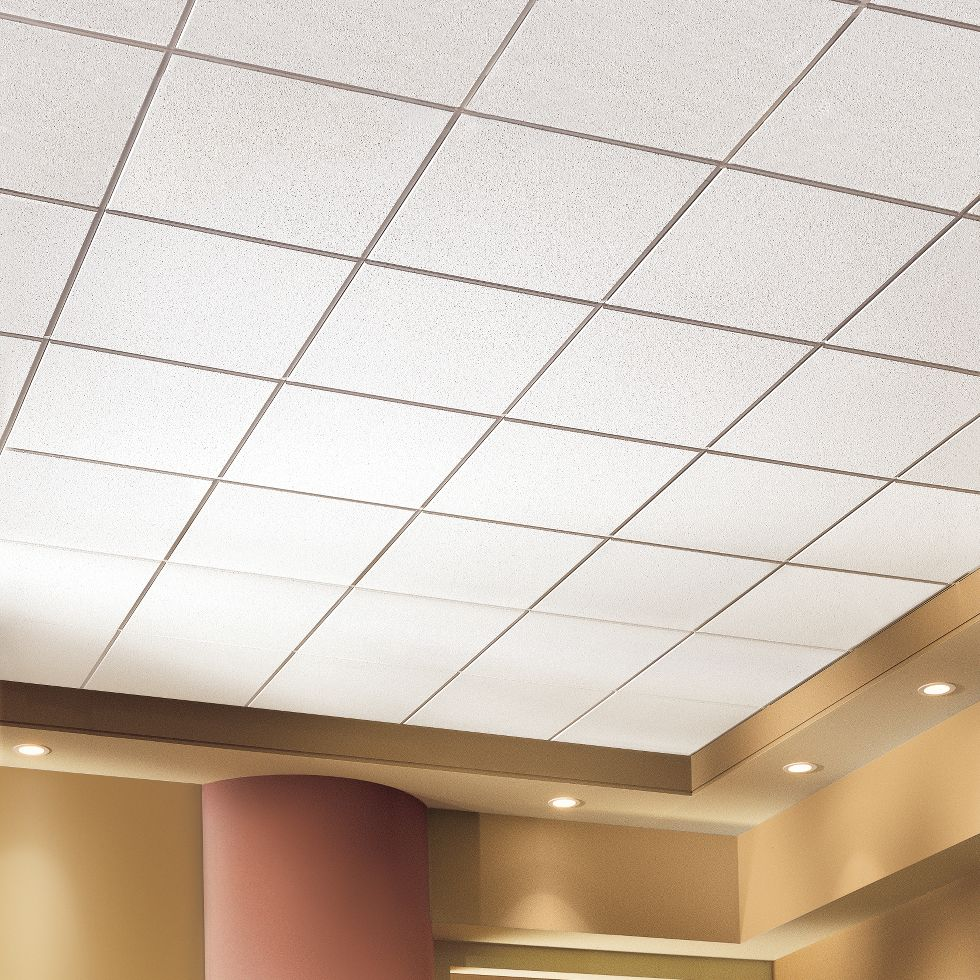 Fine fissured lines armstrong ceiling solutions commercial fine fissured high nrc dailygadgetfo Gallery
