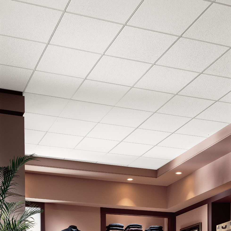 Ceilings for commercial use armstrong ceiling solutions commercial dune dailygadgetfo Image collections
