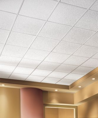 Ceilings for mercial Use