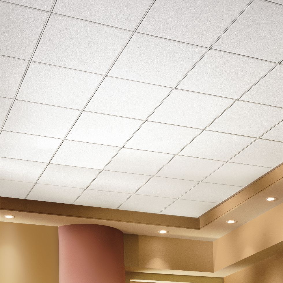 Data center ceiling design armstrong ceiling solutions commercial dailygadgetfo Images
