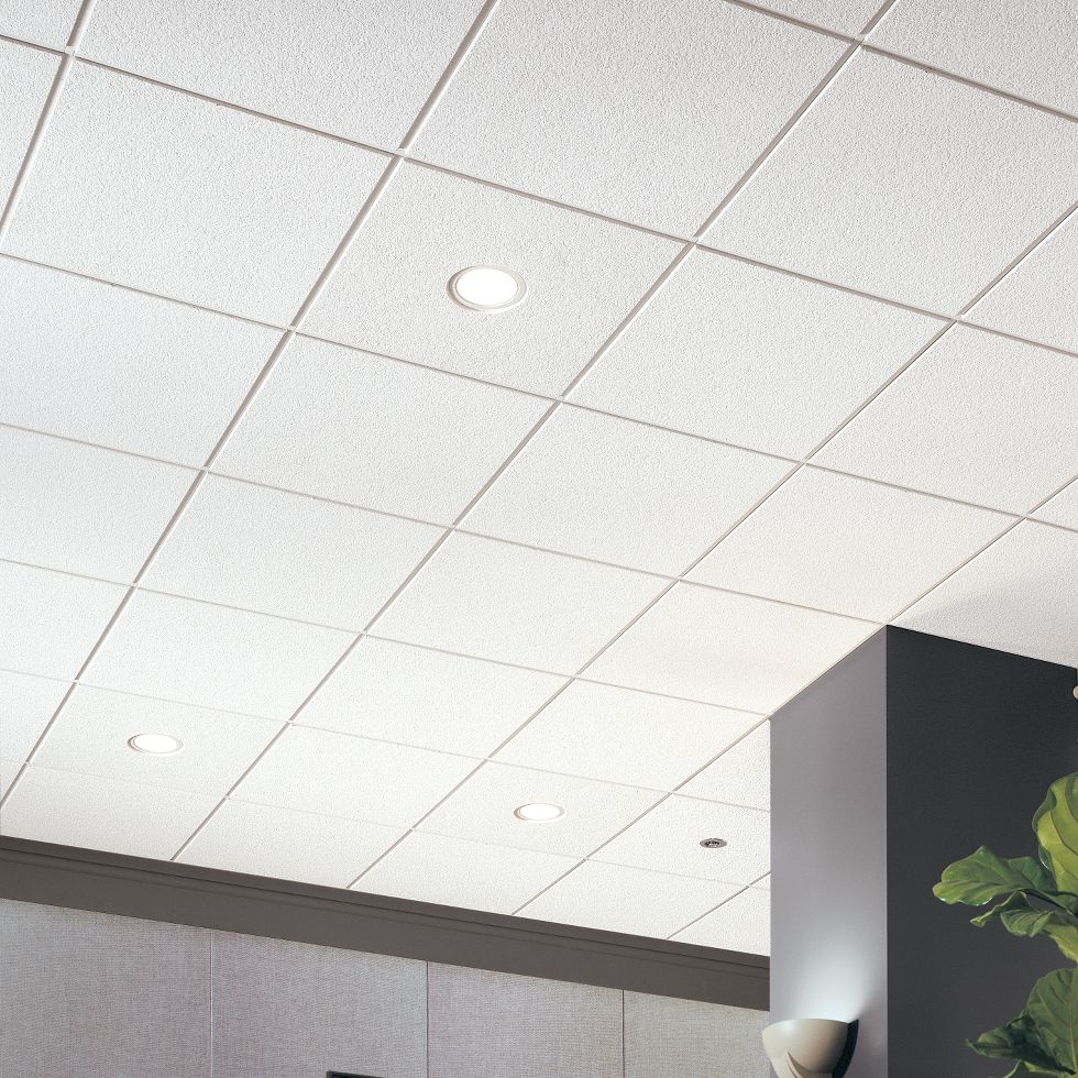 Ceilings for commercial use armstrong ceiling solutions commercial cirrus dailygadgetfo Gallery
