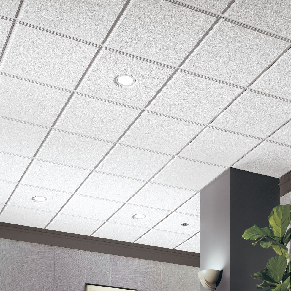 Lay in tegular ceilings armstrong ceiling solutions commercial image 1 dailygadgetfo Gallery