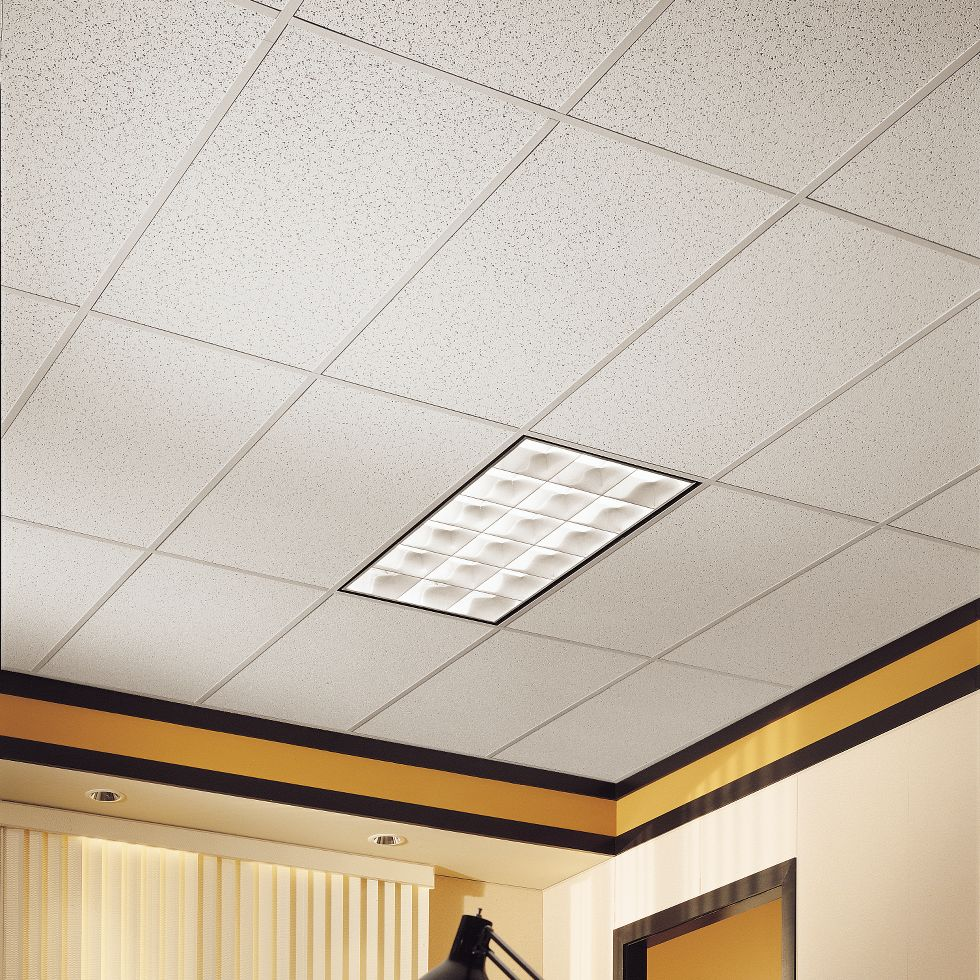 Armstrong Commercial Ceiling Tile Rebellions