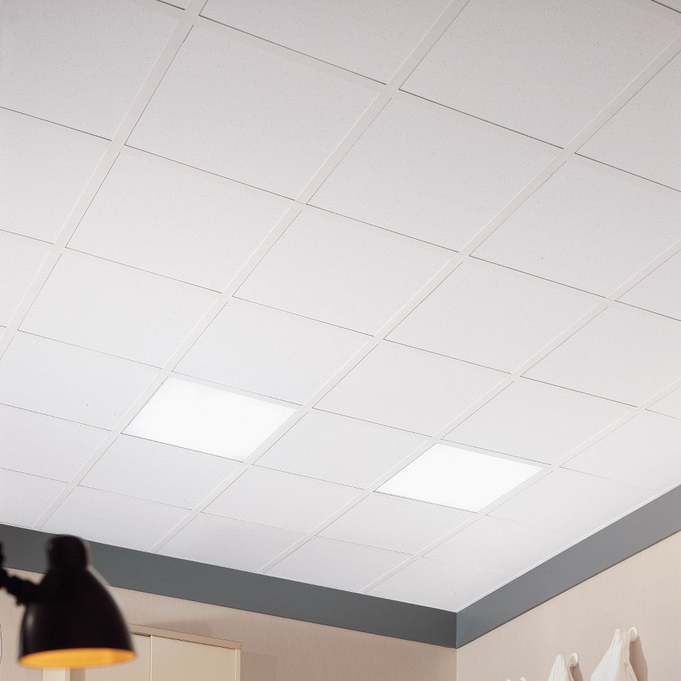 Clean room ceiling tiles armstrong ceiling solutions commercial more colors available dailygadgetfo Choice Image