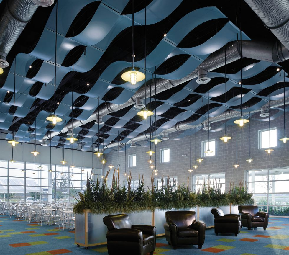Translucent Ceilings Armstrong Ceiling Solutions